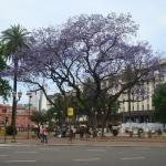 Buenos Aires: dicas gerais