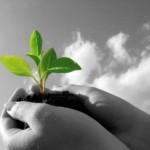 Sua atitude sustentável pode render prêmios!